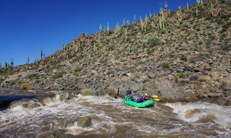 salt-river-arizona-014